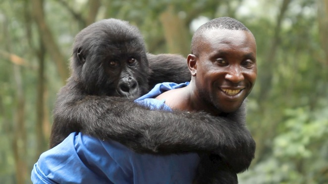 Andre with a beloved gorilla buddy