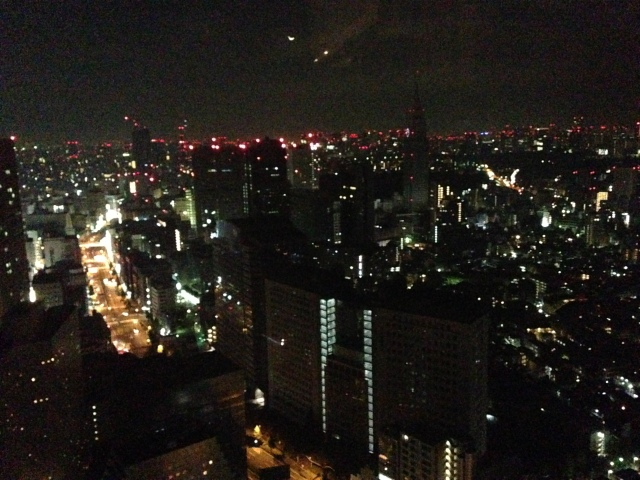2am view from the shinjuku park hyatt
